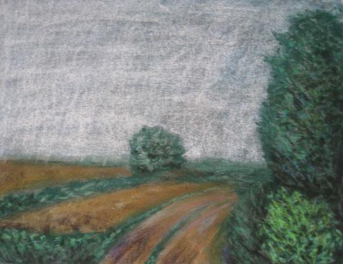 K Drieňovu, 2011, 50 x 65 cm